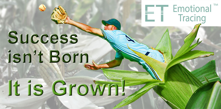 Success is Grown – Posters